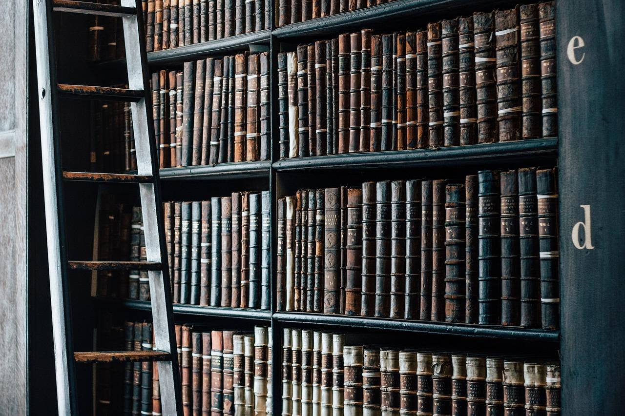 library, bookshelves, ladder-1082309.jpg